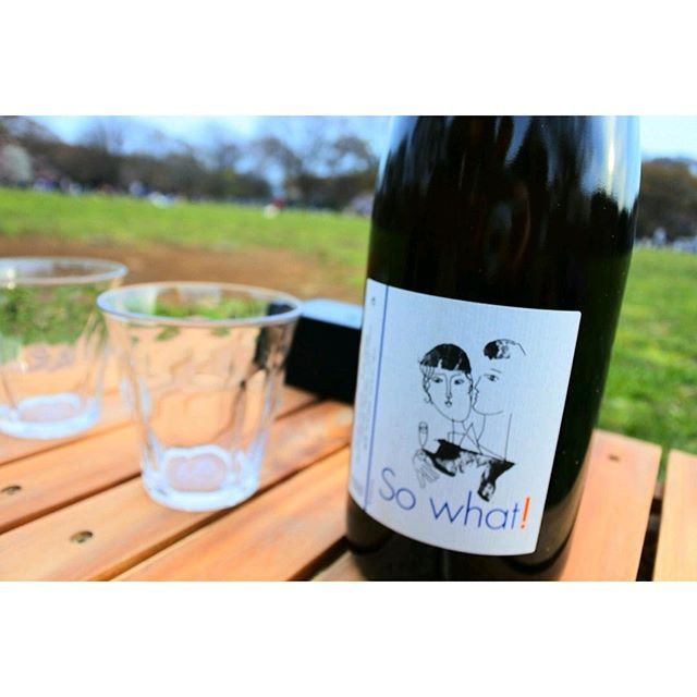 #aux #yoyogihachiman #yoyogikoen #naturalwine #sowhat! #お花見 - from Instagram